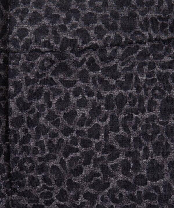 Esqualo chino leopard