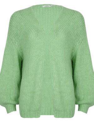 Esqualo groen vest